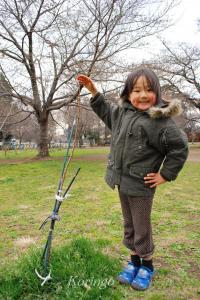 2009年3月23日桜の苗
