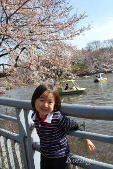 2009年4月3日井の頭公園 桜