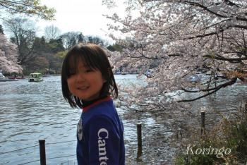 2009年4月6日池の桜と王子