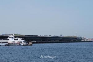 2009年5月9日大桟橋