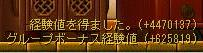 Maple0526.jpg