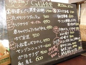 gaia7.jpg