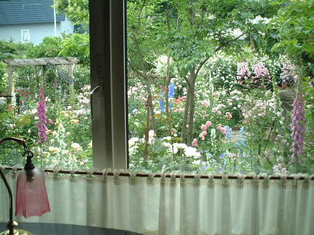 Sさんの窓辺#2