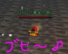 010buhi2.jpg