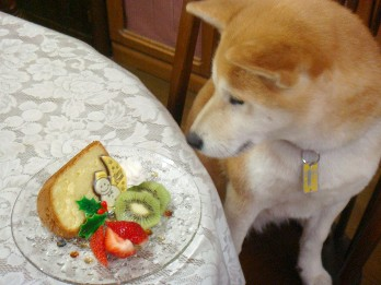 ケーキと小梅