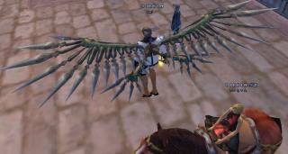 wing.jpeg