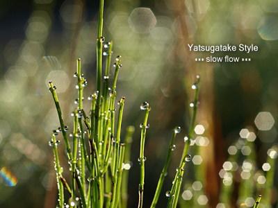 0810yatsugatake02