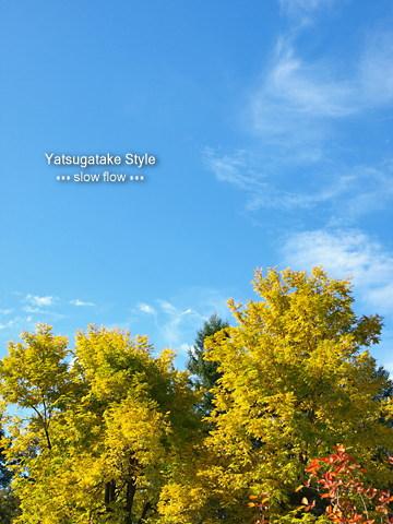 0810yatsugatake12