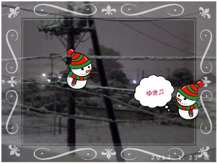 花ブ2012126-2