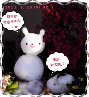 花ブ2012126-9