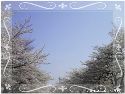 花ブ201249-12
