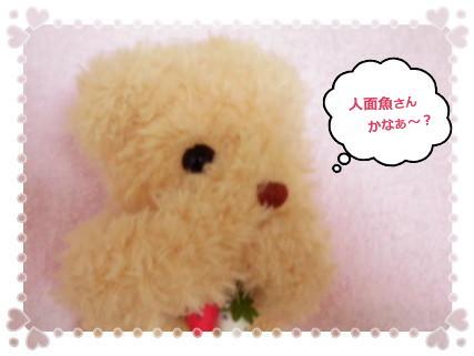 花ブ2012417-5