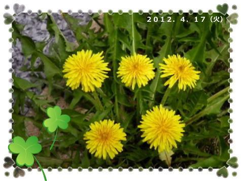 花ブ2012417-8