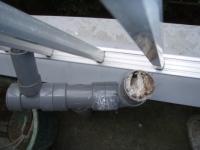 排水管の中1