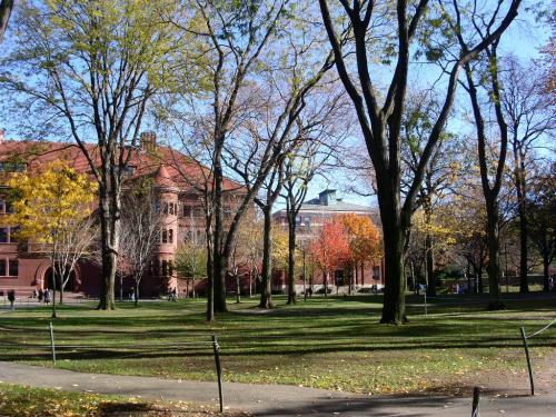 ハーバード3