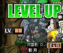 めいぽ 双雲影55LV