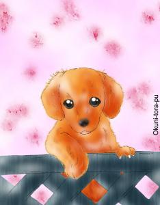 犬~ダックスフント