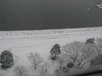 自治体セミナー⑦ 凍える琵琶湖