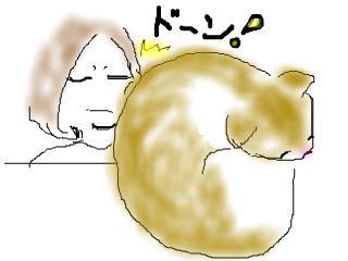 snap_kuroenpitsu_200950142953.jpg