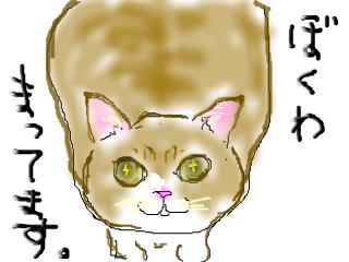 snap_kuroenpitsu_200950151729.jpg