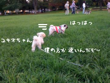 IMG_0398.jpg