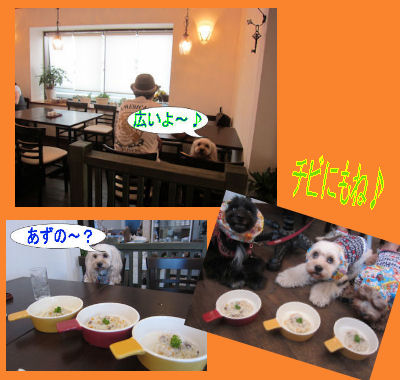 2011.9.4店内