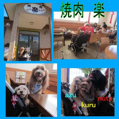 2011.9.18楽