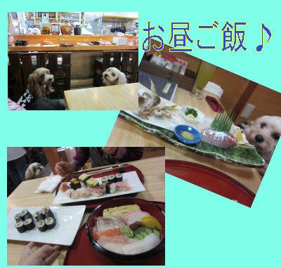 2011.9.24お昼ご飯