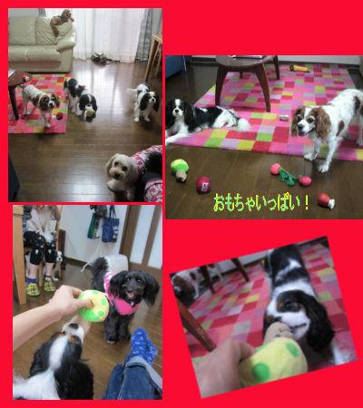 2011.9.24遊ぶ~!!