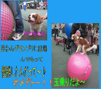 2011.10.9芸ワン