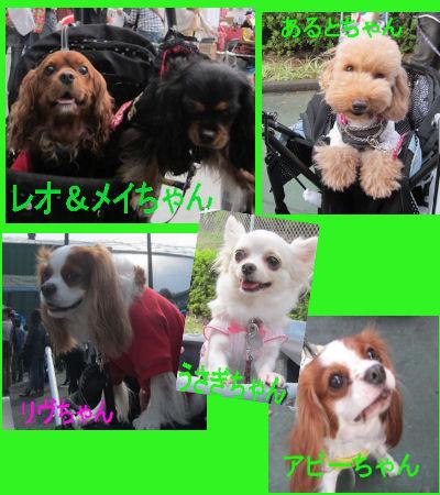 2011.10.9お友達3