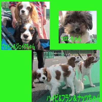 2011.10.9お友達4