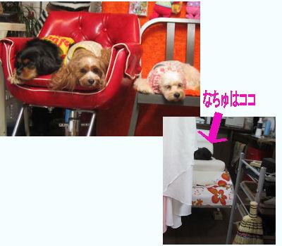 2011.10.22みんなオネム