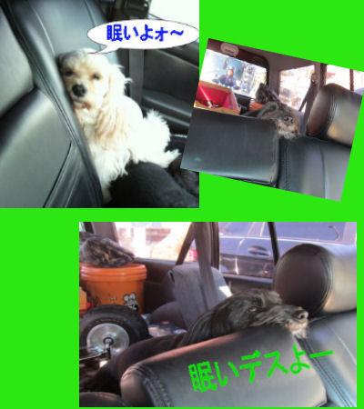 2011.10.29朝ドライブ