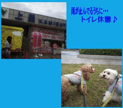 2011.11.6上里pa