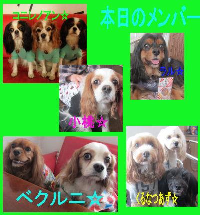 2012.1.15めんばー