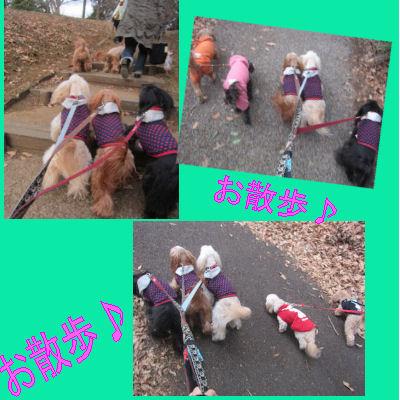 2012.1.28おさんぽ