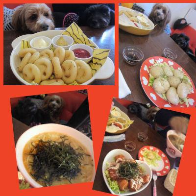 2012.2.5食事