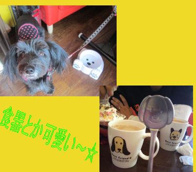 2012.2.5かわいい~