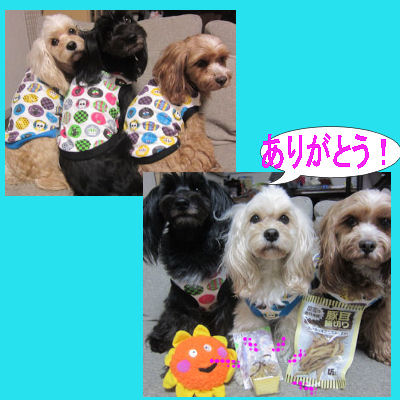 2012.3.15坊ありがとう