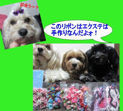 2012.3.15愛ちゃんありがと2