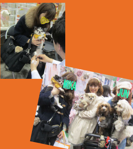 2012.4.1マッサージ