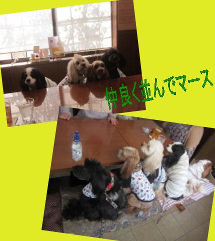 2012.4.5ぎっしり