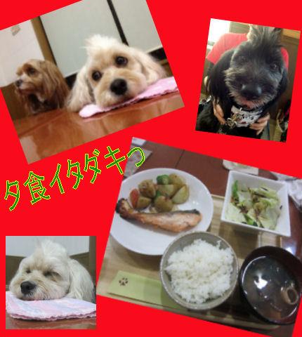 2012.4.5夕食