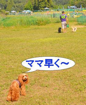 2011.10.10ママ早く~