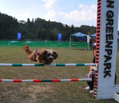 2011.10.10くるみジャンプ