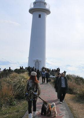 2012.1.1灯台?