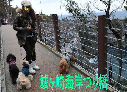 2012.1.2吊り橋