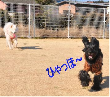 2012.1.9ひゃほ~う