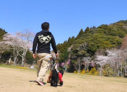 2012.4.8園内1